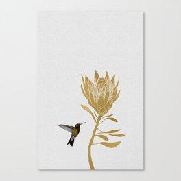 Hummingbird & Flower I Canvas Print
