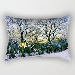 Winter Sunlight Rectangular Pillow