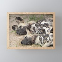 """""""Forty Winks"""" by ICA PAVON Framed Mini Art Print"""