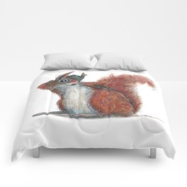 Squirrels' hat Comforters