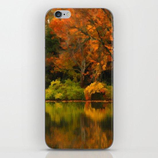 Across the Lake iPhone & iPod Skin