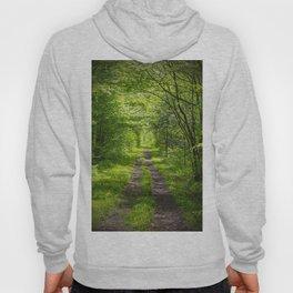 Trail Through Green Woods Hoody