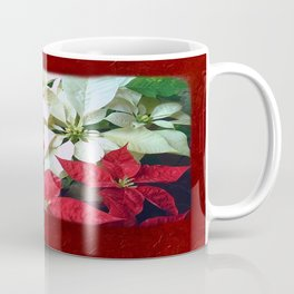Mixed color Poinsettias 1 Blank P5F0 Coffee Mug