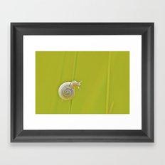 Look Right Framed Art Print