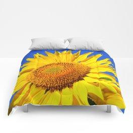 Sun Flower Comforters