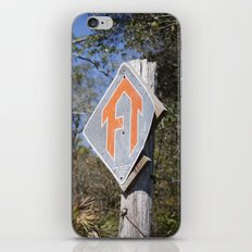 Florida Trail in Winter (unrecognizable weather in Florida) iPhone & iPod Skin