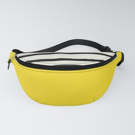 Sunshine x Stripes Fanny Pack