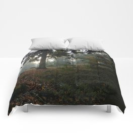 Divided In Fall (There Are No Picnics Here) Comforters