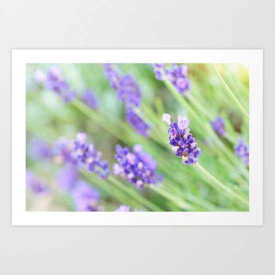 Summer flowers in pastel Art Print