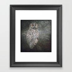 The Watcher In The Mist Framed Art Print