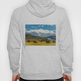 On the Farm Hoody