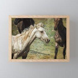 Nimbus, No. 2 Framed Mini Art Print