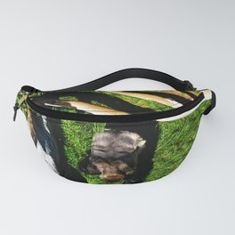 Silverback From Above Fanny Pack