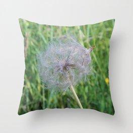 Jumbo Dandelion Close Up Throw Pillow