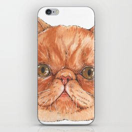 Betty aka The Snappy Cat- artist Ellie Hoult iPhone Skin