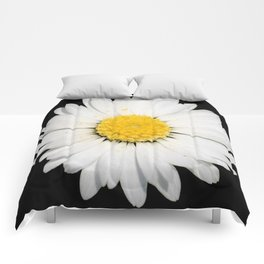 Top View of a White Daisy Isolated on Black Comforters