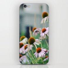 Mellow iPhone & iPod Skin
