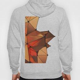 Abstract geometric reds Hoody