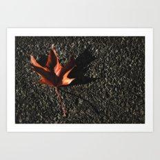 red leaf. Art Print