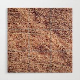 Nylon fishnet Wood Wall Art