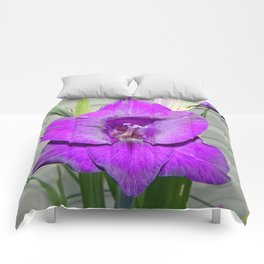 Purple Gladiola Comforters