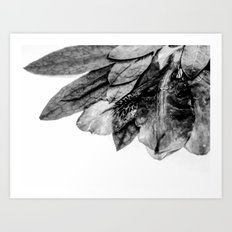 The Blackfish Camouflage Art Print