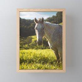 Horse Framed Mini Art Print