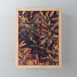 leaves evolved 5 Framed Mini Art Print