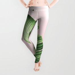 Banana Leaf on pink Leggings