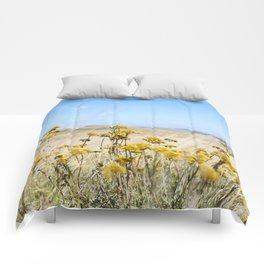 Eastern Cape Everlastings Comforters