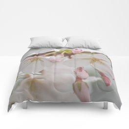 Delicate Blush Comforters