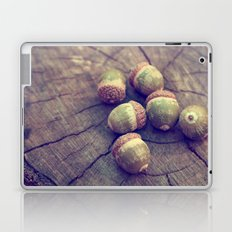 acorns Laptop & iPad Skin