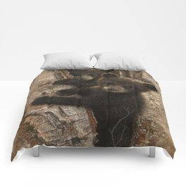 Black Bear Cubs - Curious Cubs Comforters
