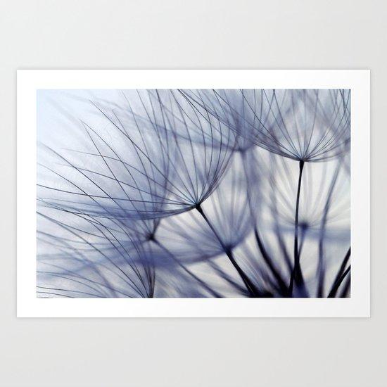 Dandelion In Blue No.2 Art Print