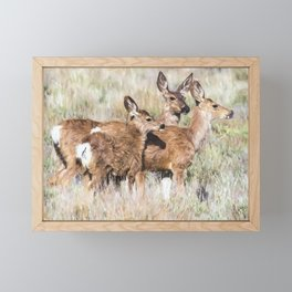 Two Deer, a Fawn and a Flower Framed Mini Art Print