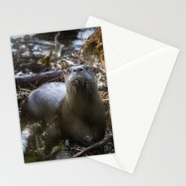 Sensed But Not Seen Stationery Cards