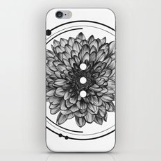 Elliptical I iPhone & iPod Skin