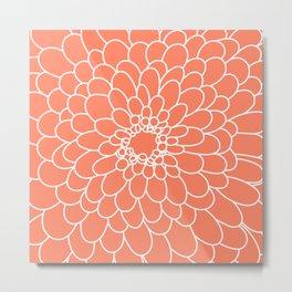 Coral Chrysanth Metal Print