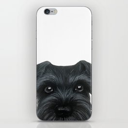 Black Schnauzer, Dog illustration original painting print iPhone Skin