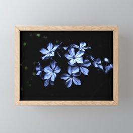 Under The Blue Moon Framed Mini Art Print