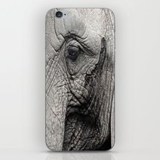 pachyderm iPhone & iPod Skin