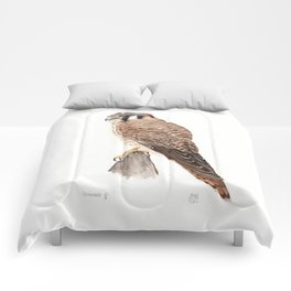Falcon Watercolor Painting  Comforters