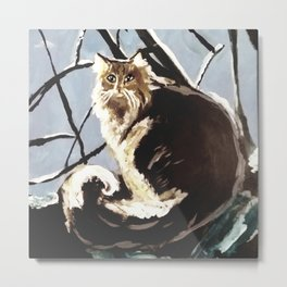 Fluffy tabby cat Metal Print