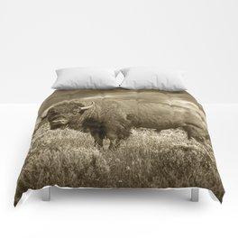 American Buffalo in Sepia Tone Comforters