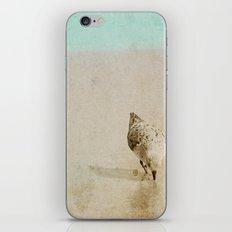 Sandpiper iPhone & iPod Skin