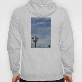 Large space of free sky and two small luminaries where a group of pigeons have posed. Hoody