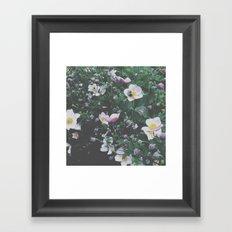 busy bee. Framed Art Print