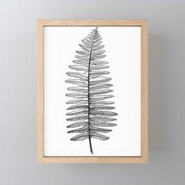 Fern Frond Framed Mini Art Print