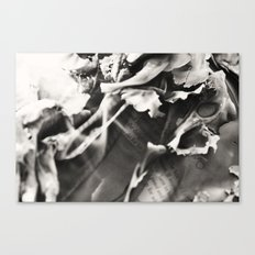Wasted thoughts  Canvas Print