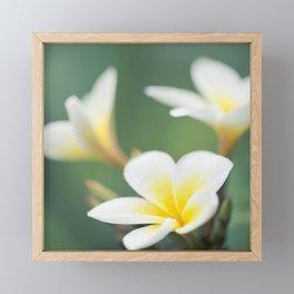 in the happy garden Framed Mini Art Print